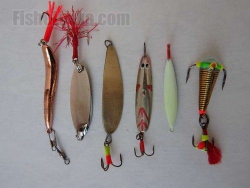 Fishing different species of fish in the winter spinners – lure selection