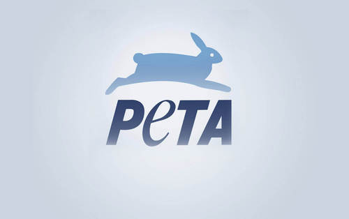 Urgent Message From PETA: How to Keep Kids, Dogs, and Others Safe During Hot Weather