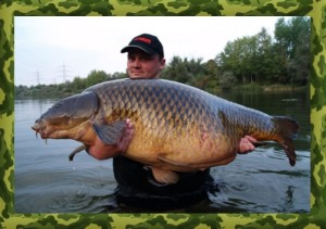 Catching big carp