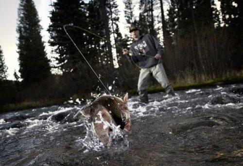 Correct hooking and playing fish