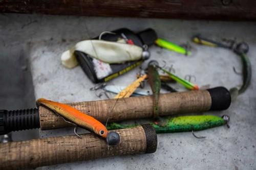 Effzett Longhorn-идеальная приманка для ловли судака и окуня. Фото 8