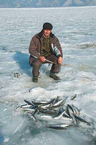 ловля омуля на Байкале