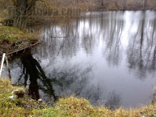 Сельский пруд осенью.