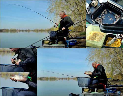 Fishing for carp in March