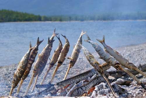 Ловля рыбы на Байкале летом