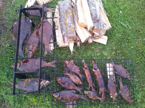 История о рыбалке на озере Волго