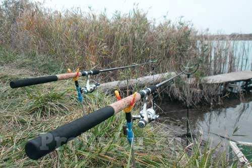 Ловля на фидер на пруду