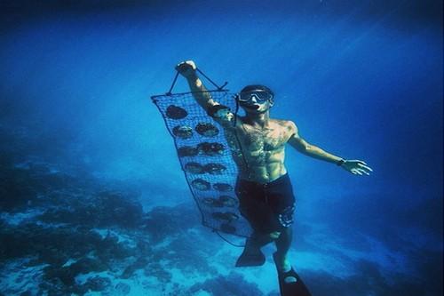 Ныряльщики за жемчугом - древняя морская профессия