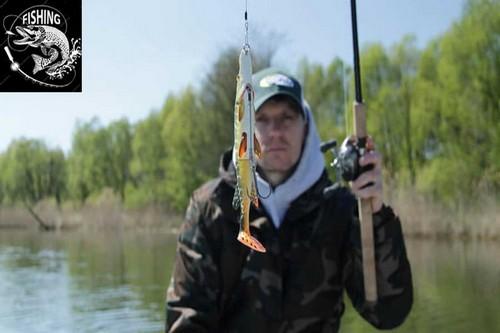 Топ приманок для ловли щуки - приманка 3D Hybrid Pike. Фото 11