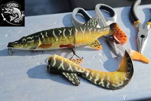 Топ приманок для ловли щуки - приманка 3D Hybrid Pike. Фото 2