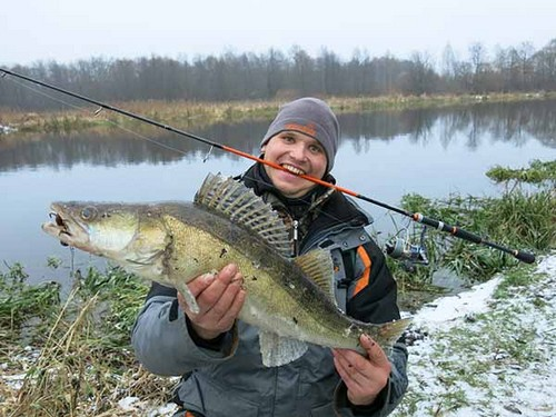 Ловля судака зимой на спиннинг