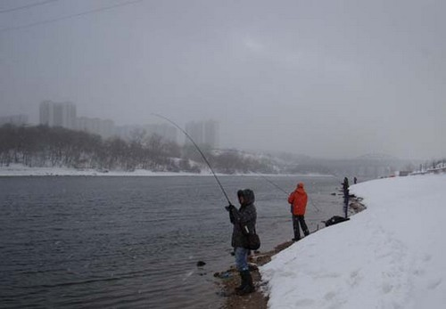 Winter fishing with spinning on the Moscow river in Moscow