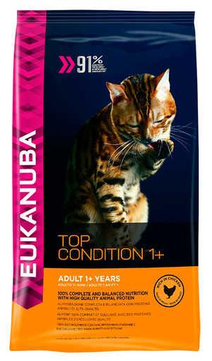 Как кормить кошек