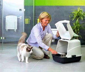 Чем удобен закрытый туалет для кошки
