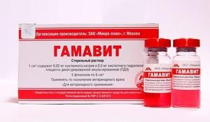 Как использовать препарат гамавит