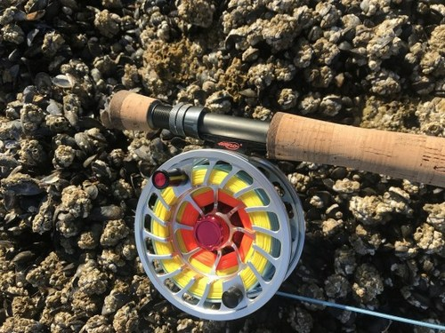 The Airflo Sniper fly line and V2 fly reel are a great bass combo!!