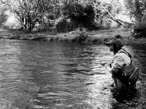 River Focus: in the zone chasing trout and grayling