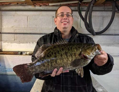 Illinois Record Smallmouth Bass