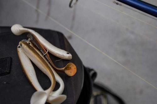Effzett Longhorn-идеальная приманка для ловли судака и окуня. Фото 10