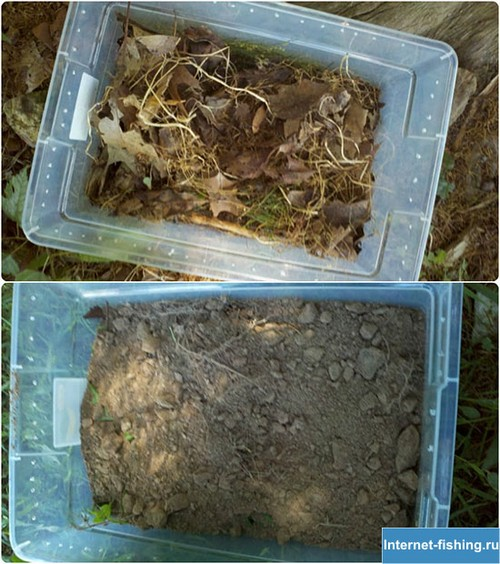 На дно первого контейнера насыпьте сухой травы и листьев, а затем слой грунта