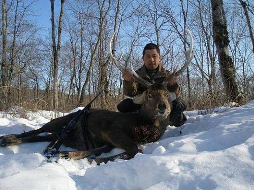 Охота в Японии