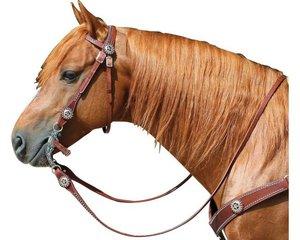 Узда для лошади